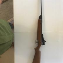 RWS Diana pellet gun