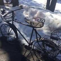"Cute garden ""bike"" planter"