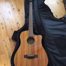 Fender VB-Nat Victor Bailey acoustic bass guitar