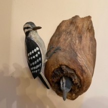 Woodpeckers by Judy Brown