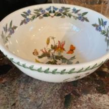 The Botanic garden bowl